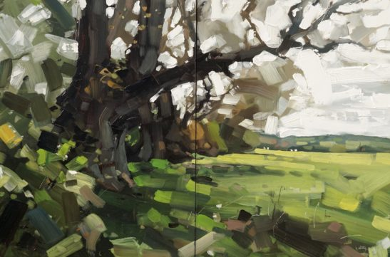 11 Oak Tree near Herner 61 x 41 cm oil on board