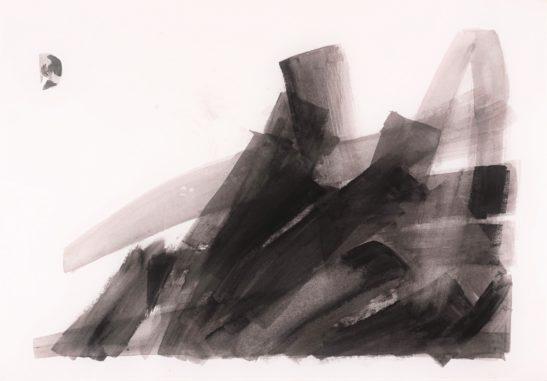 18 Close up III 59 x 42 cm Bideford Black on paper