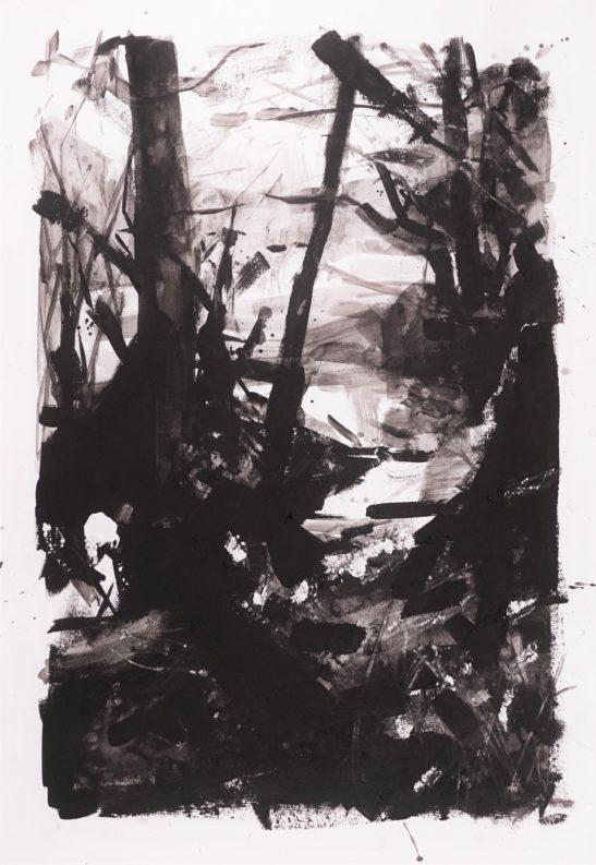 19 Winter Solstice 42 x 59 cm Bideford Black on paper