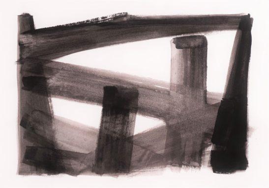 41 Close up I 42 x 29 cm Bideford Black on paper