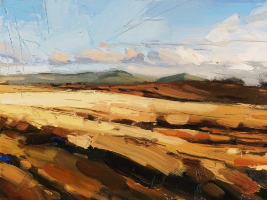 8 Dartmoor 22 x 30 cm oil on board