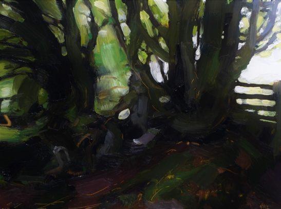 8 Woodland near Withypool 22 x 30 cm oil on board