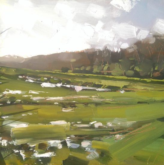 9 Taw Floodplain 20 x 20 cm oil on board