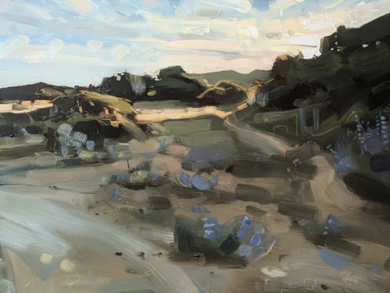 Braunton Burrows Midsummer Night 46 x 61 cm oil on board