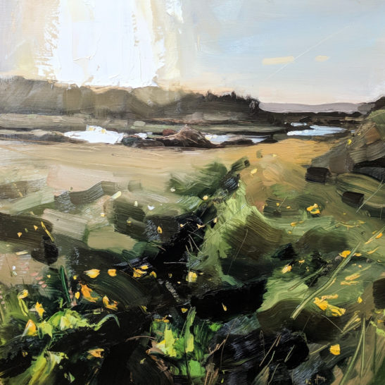 Buttercups River Taw 50 x 50 cm oil on board
