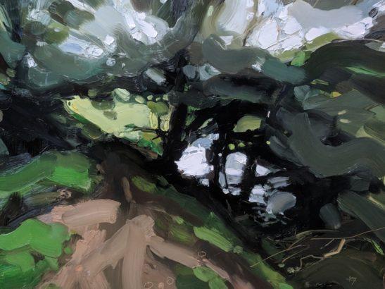 Danes Brook Exmoor 46 x 61 cm oil on board