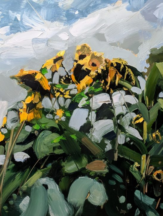 Zebedees Sunflowers 46 x 61 cm oil on board