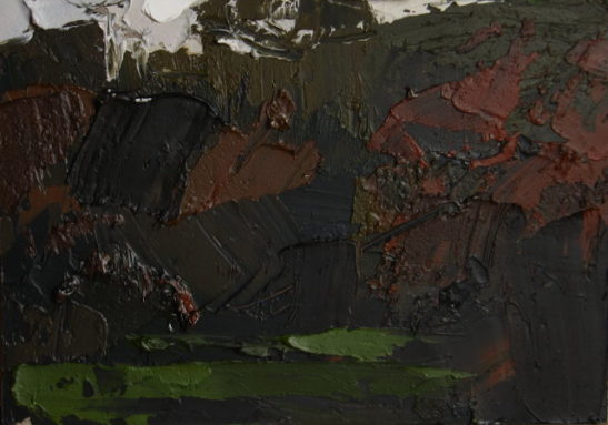 07c rosemoor study 20 x 15 cm oil on board