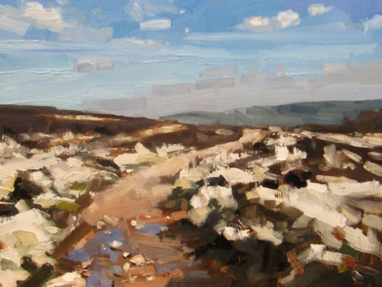 20 Dunkery Beacon 60 x 80 cm oil on board scaled