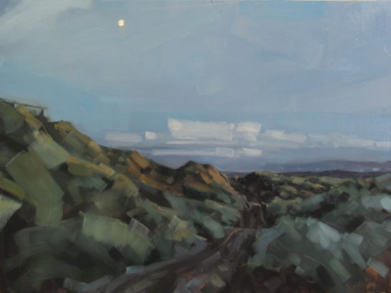 37 The moon over Braunton Burrows 60 x 80 cm oil on board