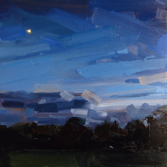 42 stanmer park dusk 50 x 50 cm oil on board