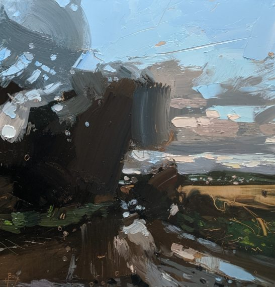 Braunton Burrows 20 x 02 cm oil on board