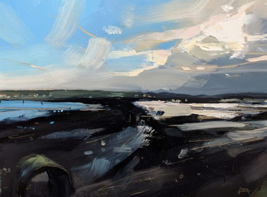 Braunton Marsh 22 x 30 cm oil on board