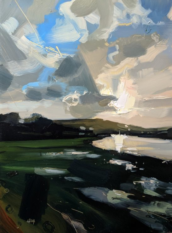 Flooded Field Bishops Tawton 22 x 30 cm oil on board