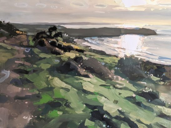 Woolacombe Down 46 x 61 cm oil on board